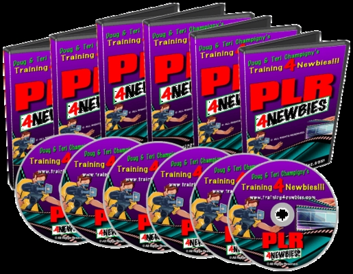 Product picture PLR For Newbies-Make More Money From  Home